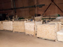 Производственных цех по изготовлению черенков